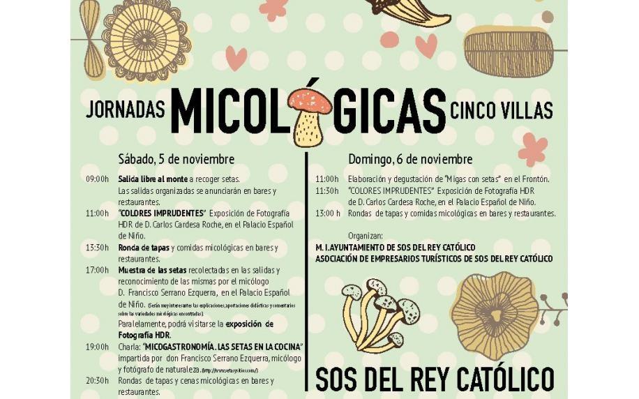 Jornadas micológicas 2016